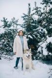A menina está ao lado de um Malamute do Alasca do cão na floresta do inverno foto de stock