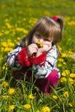 A menina está cheirando o dente-de-leão Fotos de Stock Royalty Free