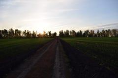A menina está correndo na estrada rural Fotos de Stock Royalty Free