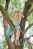 A menina está escalando em uma árvore fotos de stock royalty free