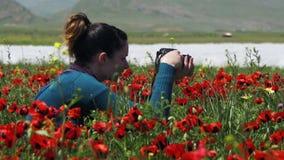 A menina está fotografando o campo de papoilas de florescência nas montanhas video estoque