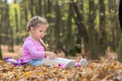 A menina está lendo um livro na madeira do outono foto de stock royalty free