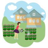 A menina está molhando as flores em uma pastagem Ilustração do vetor ilustração royalty free