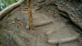 A menina está movendo-se na floresta do outono com uma câmera do gopro em sua cabeça vídeos de arquivo