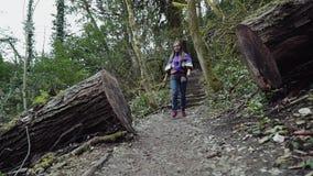 A menina está tendo o divertimento que anda ao longo do trajeto de floresta após uma árvore enorme, vista filme