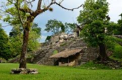 A menina explora a estrutura archaeological na cidade maia antiga Fotos de Stock