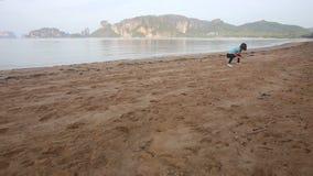 A menina faz a ioga e relaxa os músculos na praia no nascer do sol