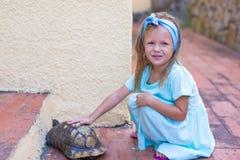Menina feliz adorble pequena com tartaruga pequena Imagem de Stock