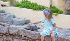 Menina feliz adorble pequena com tartaruga pequena Foto de Stock Royalty Free