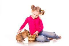 Menina feliz com coelhinho da Páscoa e ovos. Easter feliz Foto de Stock Royalty Free