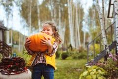 Menina feliz da criança que escolhe abóboras frescas na exploração agrícola Conceito vivo do país fotos de stock royalty free