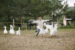 Menina feliz doce que corre após um rebanho dos gansos na exploração agrícola seus braços ao lado e ao sorriso Retrato do estilo  fotografia de stock
