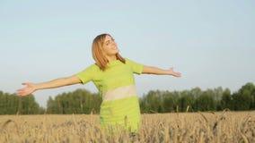 A menina feliz em um vestido verde está acenando suas mãos que estão entre as orelhas maduras do trigo vídeos de arquivo