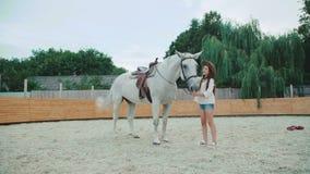 Menina feliz nova que acaricia seu cavalo consideravelmente branco na área 4K filme