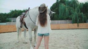 Menina feliz nova que acaricia seu cavalo consideravelmente branco na área 4K vídeos de arquivo
