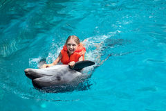 Menina feliz que monta o golfinho na piscina Foto de Stock Royalty Free