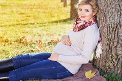 Menina grávida no parque do outono imagem de stock