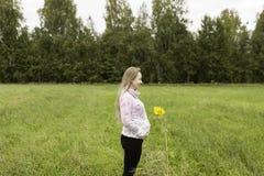 Menina grávida que anda na natureza e no sorriso Fotos de Stock