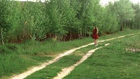Menina gr?vida em caminhadas do vestido atrav?s da madeira filme