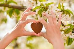 A menina guarda o coração em suas mãos Cora??o ? disposi??o Conceito da doação saudável, do amor, do órgão, do doador, da esperan fotografia de stock royalty free
