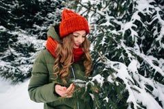 A menina guarda o ramo de árvore coberto de neve na floresta do inverno Imagens de Stock