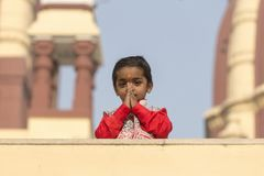 Menina indiana nova do retrato em Nova Deli, Índia fotos de stock royalty free