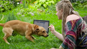 A menina joga com um gato e um cão Abrigo para animais de estimação HD filme