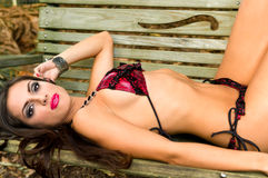 Menina latin sensual Foto de Stock