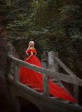 Menina loura bonita em um vestido vermelho luxuoso fotografia de stock