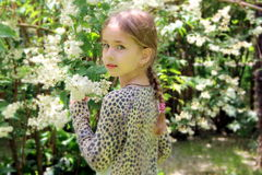 Menina loura bonita pequena e muitas flores brancas no verão fotografia de stock royalty free