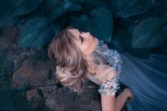 Menina loura, com um penteado recolhido bonito O cabelo cor-de-rosa não é longo Vestido incomum cinzento-azul da princesa Retrato imagem de stock royalty free