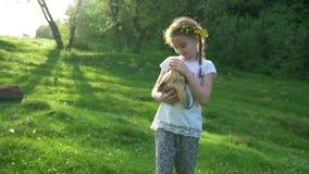 Menina loura da criança que guarda seu animal de animal de estimação da cobaia Metragem lisa Handheld fora summertime vídeos de arquivo