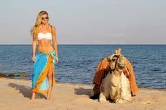 Menina loura nos óculos de sol e posição branca do biquini e a azul do pareo perto do camelo O camelo encontra-se na areia, na pr imagem de stock
