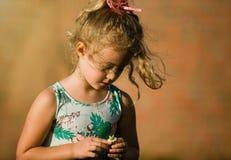 Menina loura pequena com camomila, verão exterior Fotos de Stock