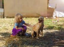 Menina loura pequena com seu cão do perdigueiro fotografia de stock royalty free