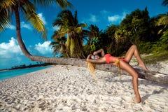 menina loura 'sexy' na praia com palmas e o c?u azul imagens de stock
