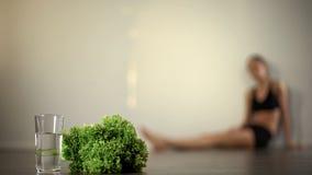 A menina magro perdeu a consciência devendo fazer dieta, para desejar, anorexia, corpo esgotado fotografia de stock