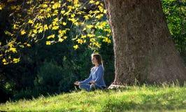 A menina medita o assento na grama sob a árvore de bordo no outono Foto de Stock