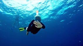Menina mergulhando bonito que acena na câmera filme
