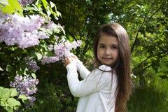 Menina moreno pequena bonito, vestida em uma camisa branca, guarda um ramo de florescência do lilás Imagem de Stock