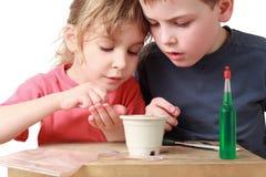 A menina mostra a irmão como semear grões no potenciômetro imagens de stock