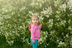 A menina na blusa cor-de-rosa no branco Fotografia de Stock