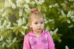A menina na blusa cor-de-rosa no branco Imagem de Stock Royalty Free