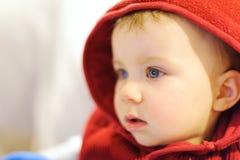 Menina na capa vermelha Imagem de Stock