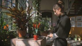 Menina na estufa para cultivo de laranjas brilhante que selectsing uma flor bonita filme