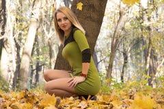 Menina na floresta do outono Fotografia de Stock Royalty Free