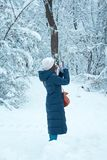 a menina na floresta toma imagens em seu telefone celular fotos de stock