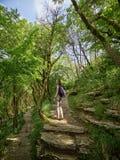 Menina na fuga na floresta úmida verde densa imagem de stock