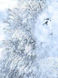 Menina na imagem do inverno Foto de Stock