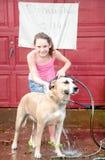 Menina na lavagem do cão Imagem de Stock Royalty Free